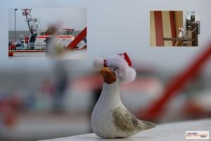 Weihnachtsmoewenreise13_4